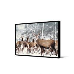 Toile encadré Groupe de cerfs, format paysage 65 x 92,5 cm, collection My gallery, Pôdevache