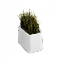 Pot Rock Garden Small, Qui est Paul ? blanc
