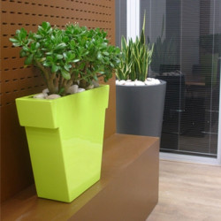 Pot Il Vaso Mat, Slide design vert Grand modèle