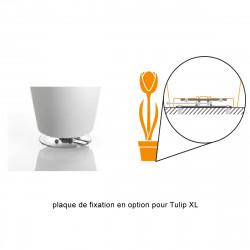 Plaque de fixation pour lampadaire Tulip Taille XL, MyYour